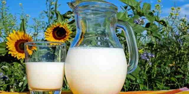 Молоко, польза и вред