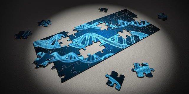 гены и долголетие